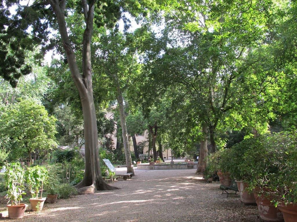 Il Giardino dei semplici a Firenze, uno dei tanti giardini della città
